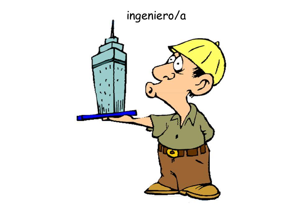 ingeniero/a