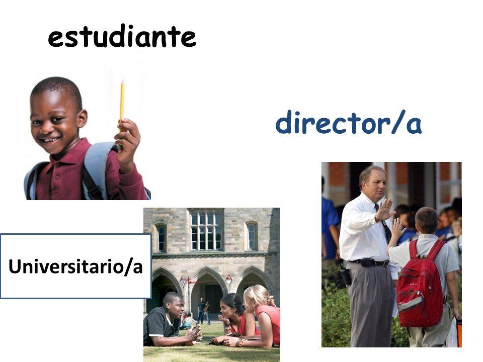 estudiante director/a Universitario/a