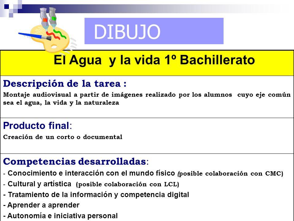 DIBUJO El Agua y la vida 1º Bachillerato Descripción de la tarea : Montaje audiovisual a partir de imágenes realizado por los alumnos cuyo eje común s