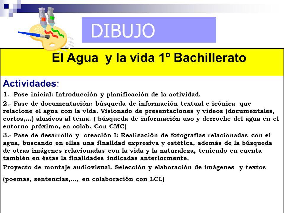 DIBUJO El Agua y la vida 1º Bachillerato Actividades : 1.- Fase inicial: Introducción y planificación de la actividad. 2.- Fase de documentación: búsq