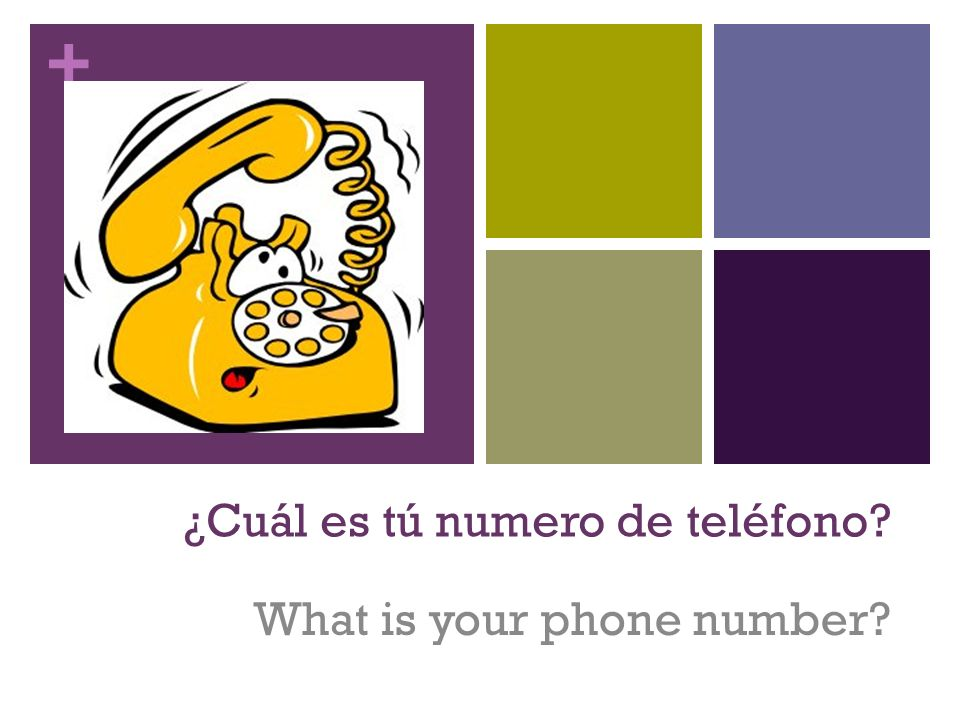 + ¿Cuál es tú numero de teléfono? What is your phone number?