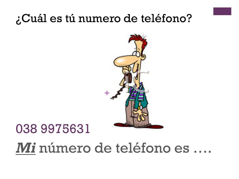 + 038 9975631 Mi número de teléfono es …. ¿Cuál es tú numero de teléfono?