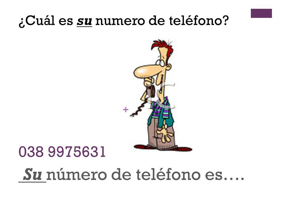 + 038 9975631 Su número de teléfono es…. ¿Cuál es su numero de teléfono?