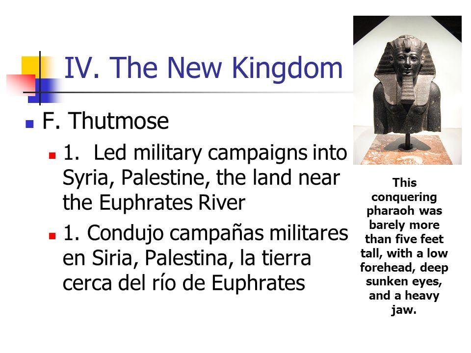 IV. The New Kingdom F. Thutmose 1. Led military campaigns into Syria, Palestine, the land near the Euphrates River 1. Condujo campañas militares en Si