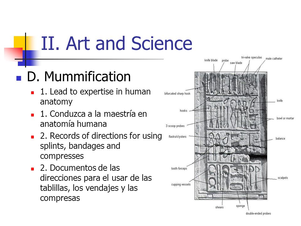 II. Art and Science D. Mummification 1. Lead to expertise in human anatomy 1. Conduzca a la maestría en anatomía humana 2. Records of directions for u