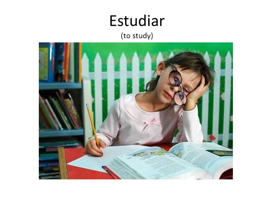 Estudiar (to study)