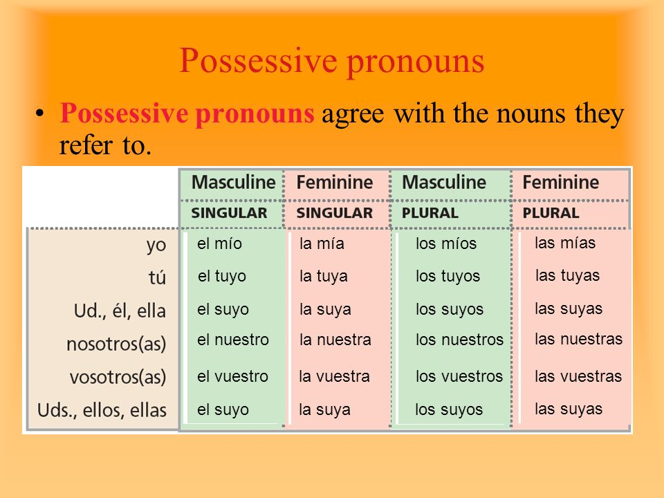 Possessive pronouns Possessive pronouns agree with the nouns they refer to. el mío el tuyo el suyo el nuestro el vuestro el suyo la mía la tuya la suy
