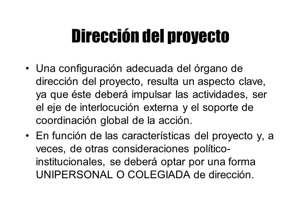 Dirección del proyecto Una configuración adecuada del órgano de dirección del proyecto, resulta un aspecto clave, ya que éste deberá impulsar las actividades, ser el eje de interlocución externa y el soporte de coordinación global de la acción.