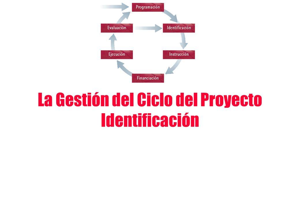 La Gestión del Ciclo del Proyecto Identificación
