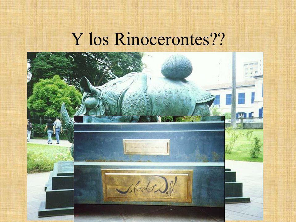 Y los Rinocerontes??