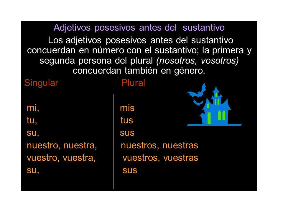 Adjetivos posesivos antes del sustantivo Los adjetivos posesivos antes del sustantivo concuerdan en número con el sustantivo; la primera y segunda per
