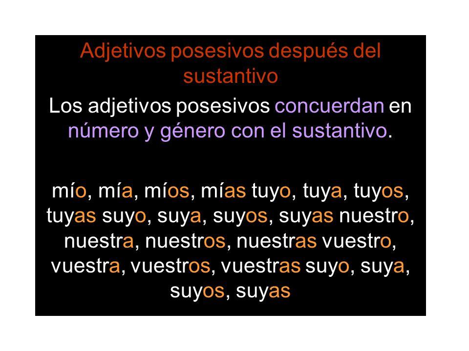 Adjetivos posesivos después del sustantivo Los adjetivos posesivos concuerdan en número y género con el sustantivo. mío, mía, míos, mías tuyo, tuya, t