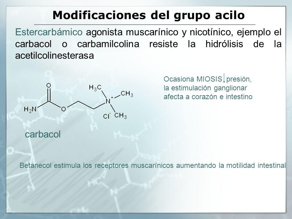 Modificaciones del grupo acilo Estercarbámico agonista muscarínico y nicotínico, ejemplo el carbacol o carbamilcolina resiste la hidrólisis de la acet