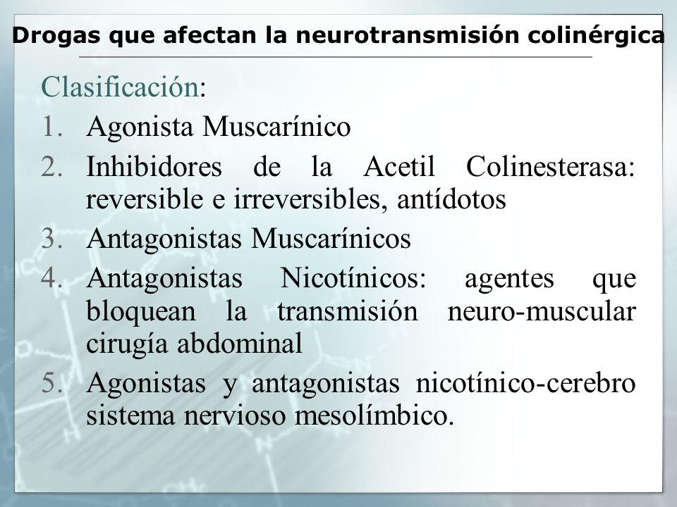 Drogas que afectan la neurotransmisión colinérgica Clasificación: 1.Agonista Muscarínico 2.Inhibidores de la Acetil Colinesterasa: reversible e irreve