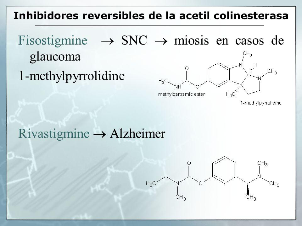 Inhibidores reversibles de la acetil colinesterasa Fisostigmine SNC miosis en casos de glaucoma 1-methylpyrrolidine Rivastigmine Alzheimer