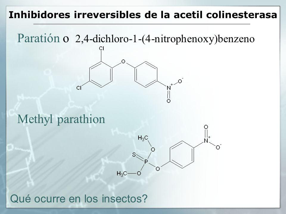 Inhibidores irreversibles de la acetil colinesterasa Paratión o 2,4-dichloro-1-(4-nitrophenoxy)benzeno Methyl parathion Qué ocurre en los insectos?