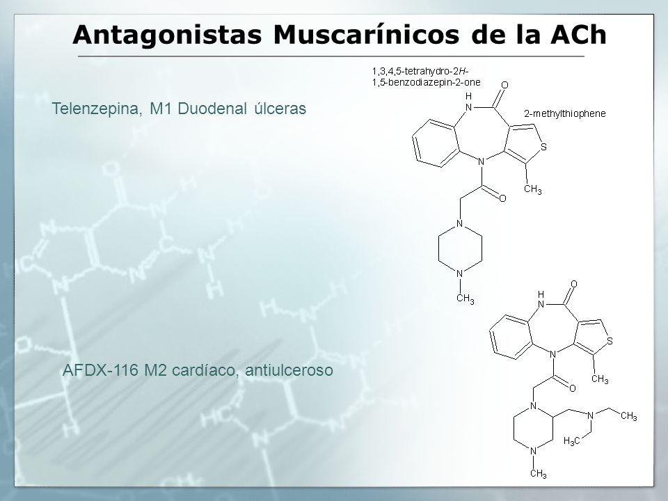 Antagonistas Muscarínicos de la ACh Telenzepina, M1 Duodenal úlceras AFDX-116 M2 cardíaco, antiulceroso