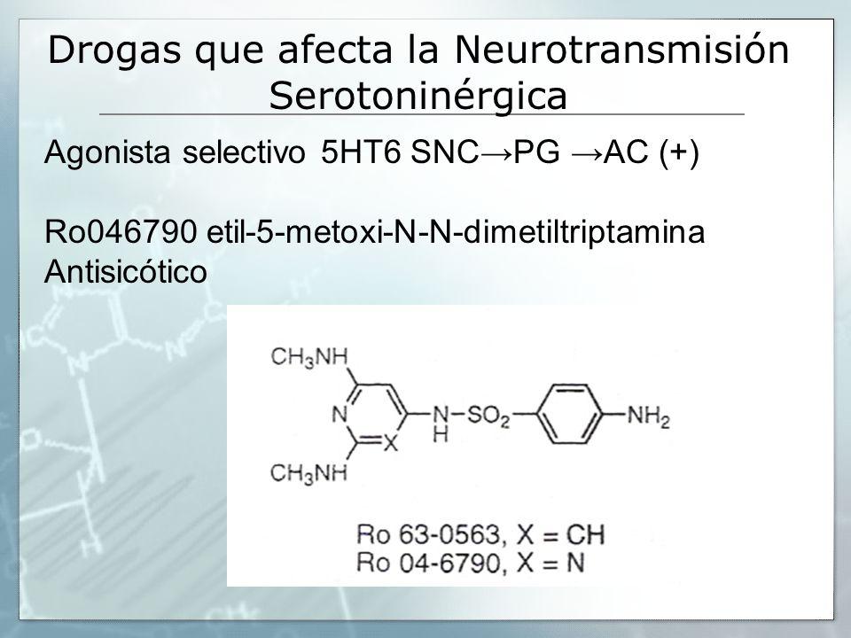 Agonista selectivo 5HT6 SNCPG AC (+) Ro046790 etil-5-metoxi-N-N-dimetiltriptamina Antisicótico Drogas que afecta la Neurotransmisión Serotoninérgica