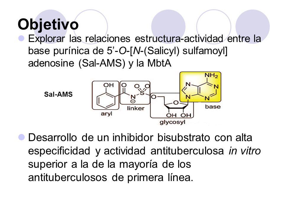 Objetivo Explorar las relaciones estructura-actividad entre la base purínica de 5-O-[N-(Salicyl) sulfamoyl] adenosine (Sal-AMS) y la MbtA Desarrollo d