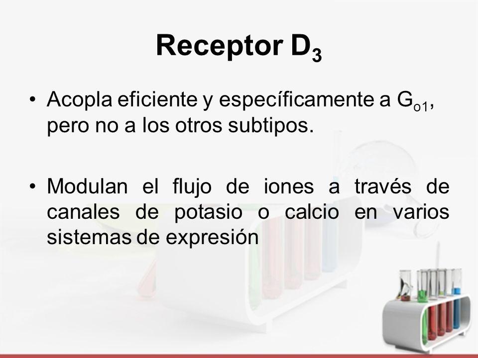 Receptor D 3 Farmacóforo del receptor de Dopamina D3.