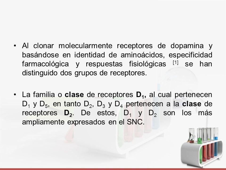 Familia de D 1 : estimulan la actividad adenilato ciclasa Familia D 2 : inhiben la producción de AMPc al acoplar a proteínas G i/o sensibles a la toxina de la pertussis.