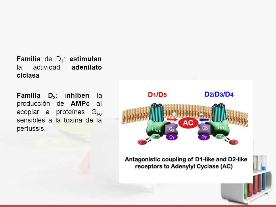 Distribución Tomado de: http://www.cnsforum.com/content/pictures/imagebank/hirespng/hrl_rcpt_sys_DA_dist.png