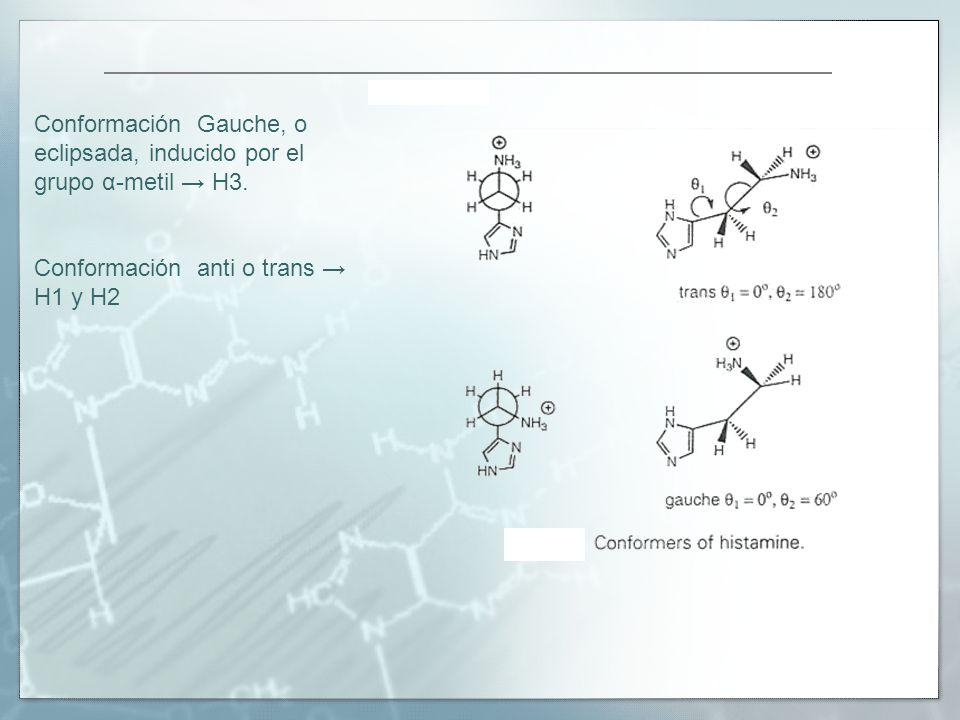 Conformación Gauche, o eclipsada, inducido por el grupo α-metil H3. Conformación anti o trans H1 y H2