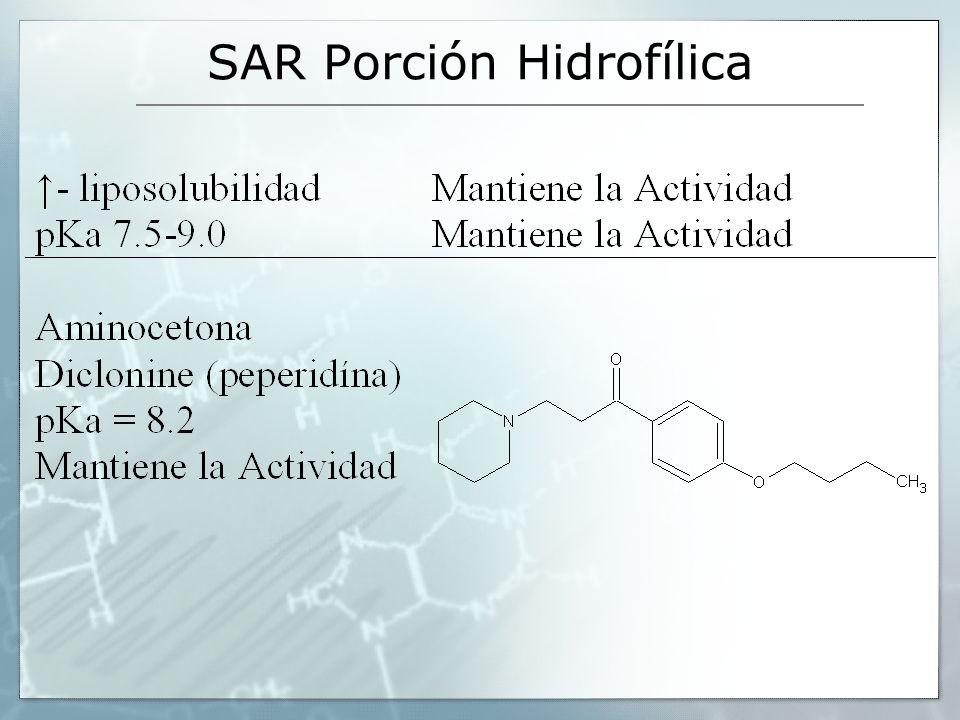 SAR Porción Hidrofílica