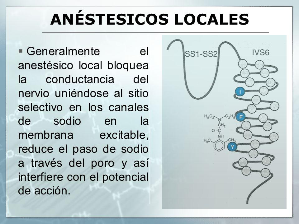 ANÉSTESICOS LOCALES Generalmente el anestésico local bloquea la conductancia del nervio uniéndose al sitio selectivo en los canales de sodio en la mem