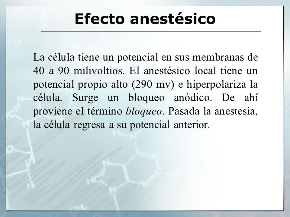 Efecto anestésico La célula tiene un potencial en sus membranas de 40 a 90 milivoltios. El anestésico local tiene un potencial propio alto (290 mv) e