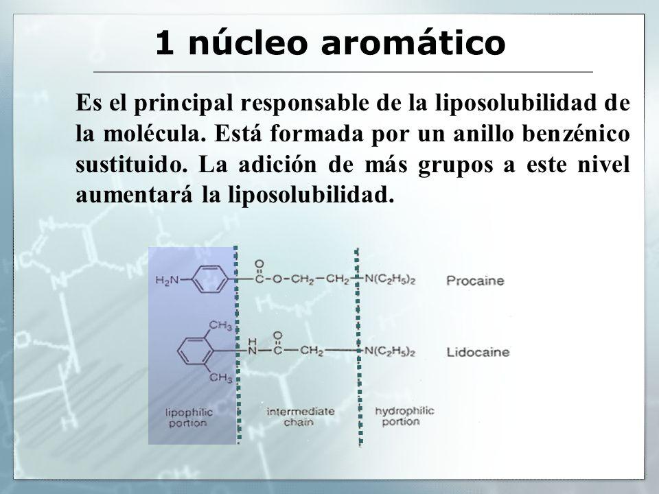 1 núcleo aromático Es el principal responsable de la liposolubilidad de la molécula. Está formada por un anillo benzénico sustituido. La adición de má