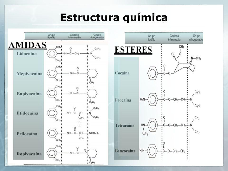 SAR Aspecto Químico de los Anestésicos Locales Amino esteres Amino aminas