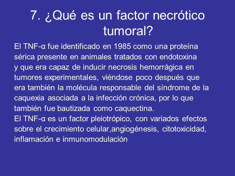 7. ¿Qué es un factor necrótico tumoral? El TNF-α fue identificado en 1985 como una proteína sérica presente en animales tratados con endotoxina y que