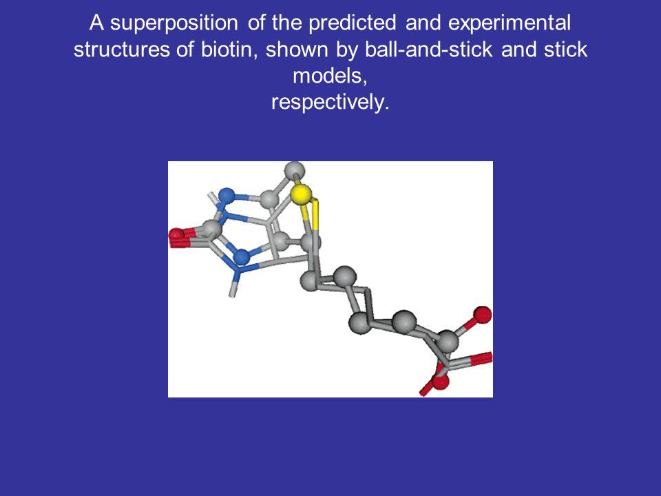 The amino acids around biotin in chains B and D.