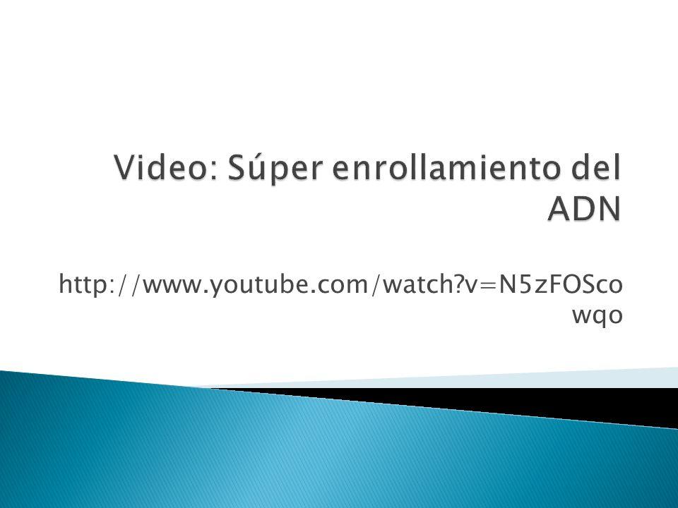 http://www.youtube.com/watch?v=N5zFOSco wqo