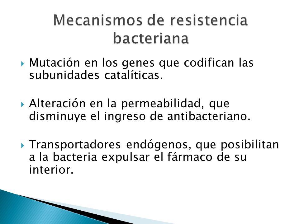 Mutación en los genes que codifican las subunidades catalíticas. Alteración en la permeabilidad, que disminuye el ingreso de antibacteriano. Transport