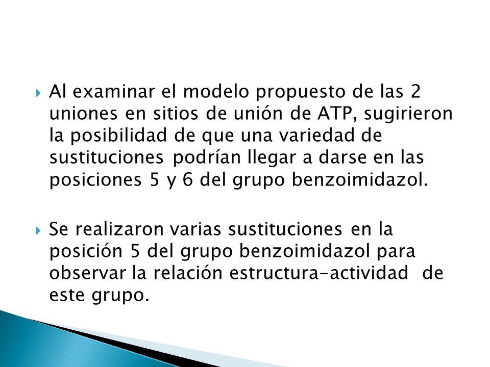 Al examinar el modelo propuesto de las 2 uniones en sitios de unión de ATP, sugirieron la posibilidad de que una variedad de sustituciones podrían lle