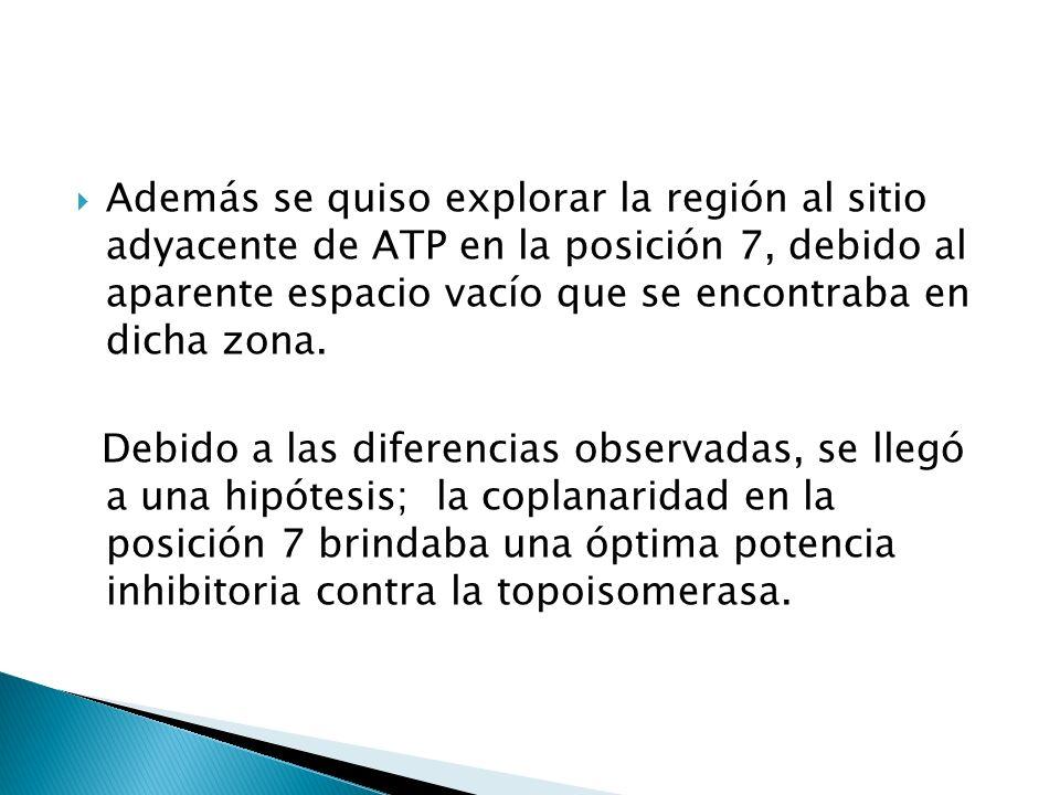 Además se quiso explorar la región al sitio adyacente de ATP en la posición 7, debido al aparente espacio vacío que se encontraba en dicha zona. Debid