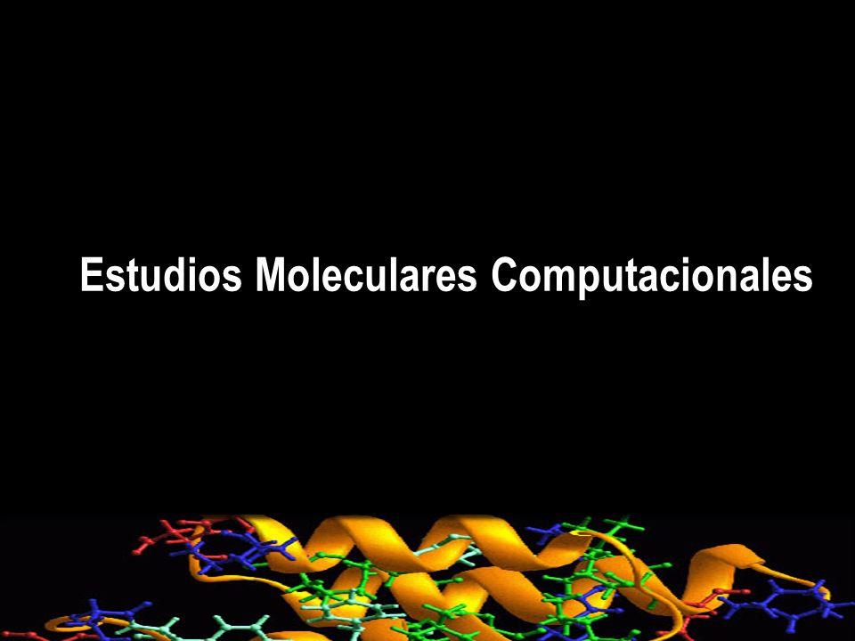 Estudios Moleculares Computacionales