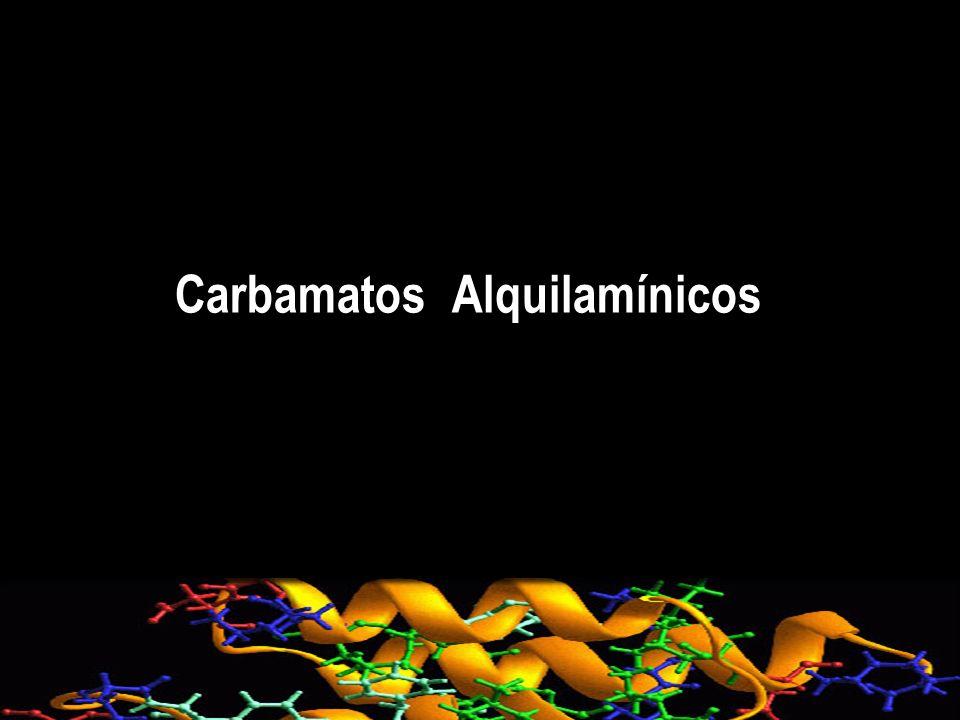 Carbamatos Alquilamínicos