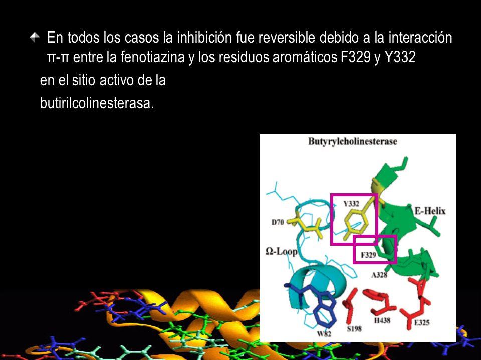 En todos los casos la inhibición fue reversible debido a la interacción π-π entre la fenotiazina y los residuos aromáticos F329 y Y332 en el sitio act