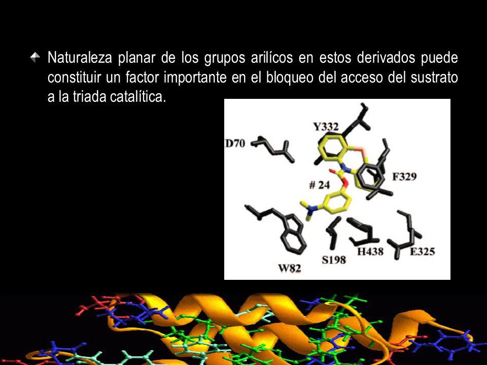 Naturaleza planar de los grupos arilícos en estos derivados puede constituir un factor importante en el bloqueo del acceso del sustrato a la triada ca