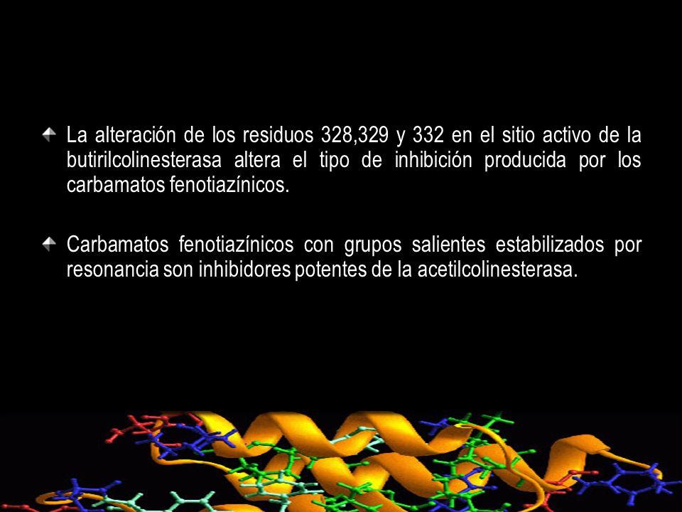 La alteración de los residuos 328,329 y 332 en el sitio activo de la butirilcolinesterasa altera el tipo de inhibición producida por los carbamatos fe