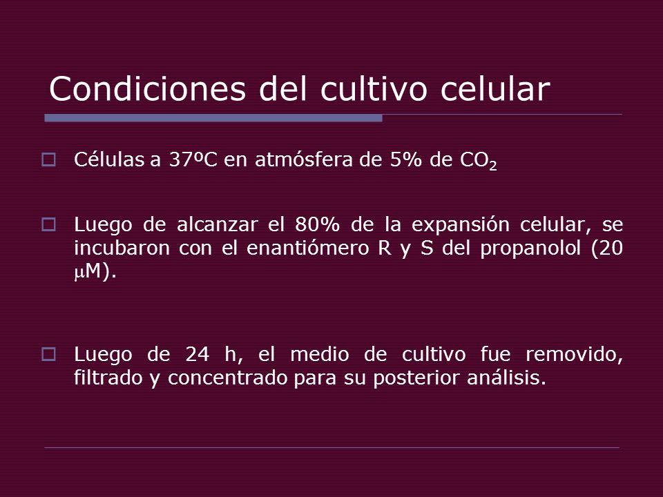 Condiciones del cultivo celular Células a 37ºC en atmósfera de 5% de CO 2 Luego de alcanzar el 80% de la expansión celular, se incubaron con el enantiómero R y S del propanolol (20M).