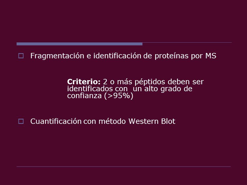 Fragmentación e identificación de proteínas por MS Criterio: 2 o más péptidos deben ser identificados con un alto grado de confianza (>95%) Cuantificación con método Western Blot