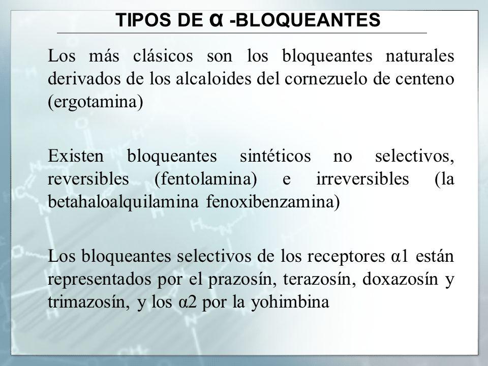 TIPOS DE α -BLOQUEANTES Los más clásicos son los bloqueantes naturales derivados de los alcaloides del cornezuelo de centeno (ergotamina) Existen bloq