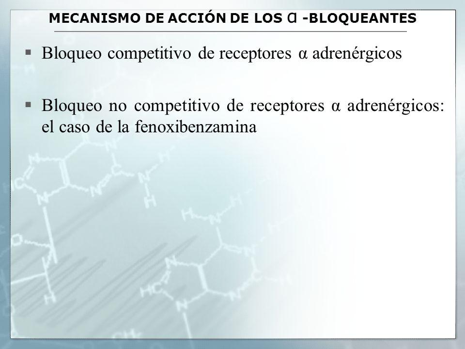 MECANISMO DE ACCIÓN DE LOS α -BLOQUEANTES Bloqueo competitivo de receptores α adrenérgicos Bloqueo no competitivo de receptores α adrenérgicos: el cas
