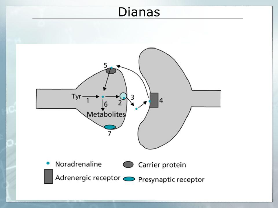 Dianas