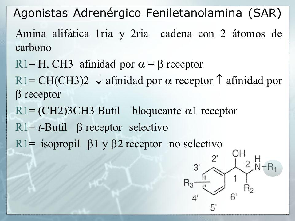Agonistas Adrenérgico Feniletanolamina (SAR) Amina alifática 1ria y 2ria cadena con 2 átomos de carbono R1= H, CH3 afinidad por = receptor R1= CH(CH3)