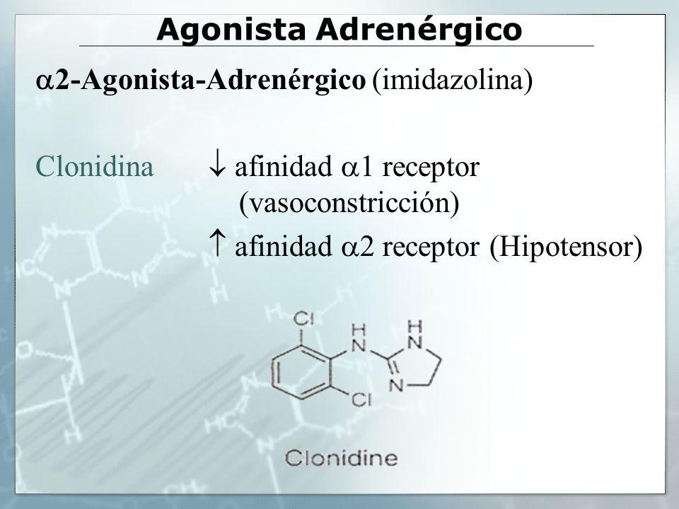 Agonista Adrenérgico 2-Agonista-Adrenérgico (imidazolina) Clonidina afinidad 1 receptor (vasoconstricción) afinidad 2 receptor (Hipotensor)